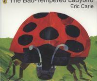 Bad-Tempered Ladybird The