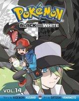 POKEMON BLACK & WHITE SLIM V14