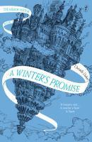 Winter's Promise The Mirror Visitor Book One A